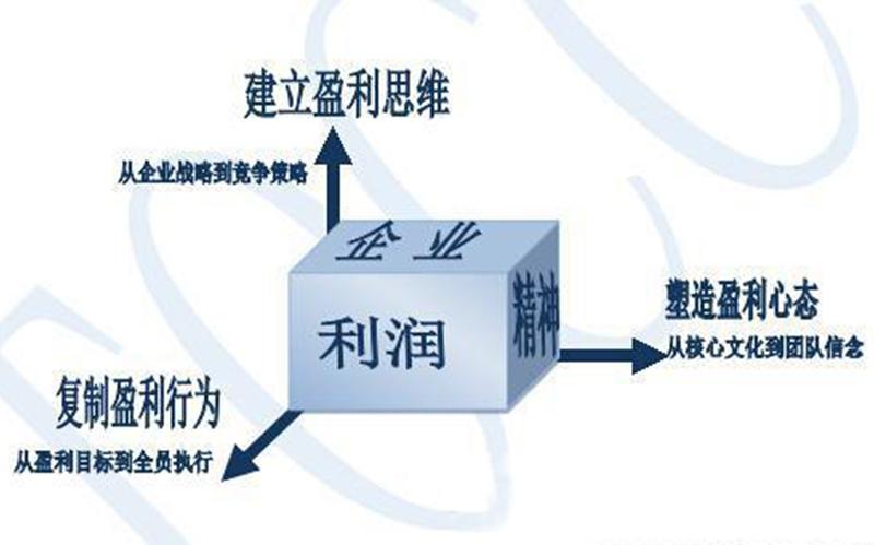 企业教练系统(企业咨询)